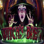 Witch`s Brew
