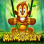 Mr. Monkey