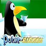 Polar Riches Slots